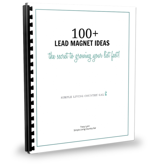 100+ Lead Magnet Ideas